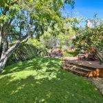 Back yard: tree, lawn, deck